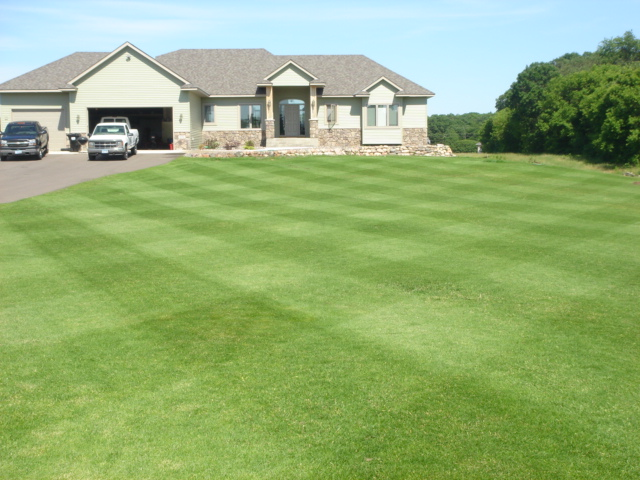 Well groomed lawn